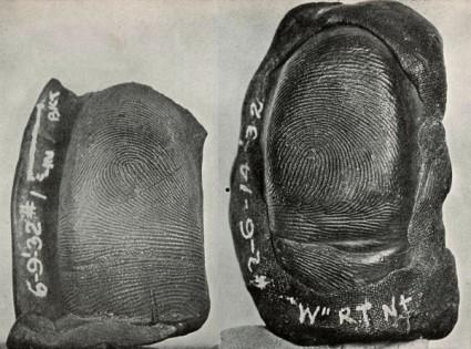 指紋(しもん)イメージ画像